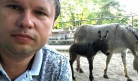 В зоопарке Бахчисарайского Парка миниатюр родился ослик. Помогите придумать имя.