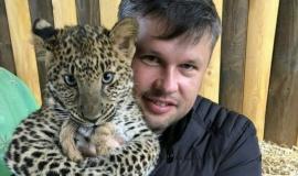 Леопардам, обитающим в Бахчисарайском парке миниатюр, исполнилось полгода